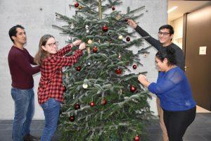 Neidisch auf Schnee: Wie Studierende im Ausland Weihnachten und Silvester feiern