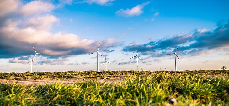 Neue Studie zeigt: Öffentliche Finanzierung nach dem ARPA-Modell bringt Innovationsvorteile für grüne Technologien