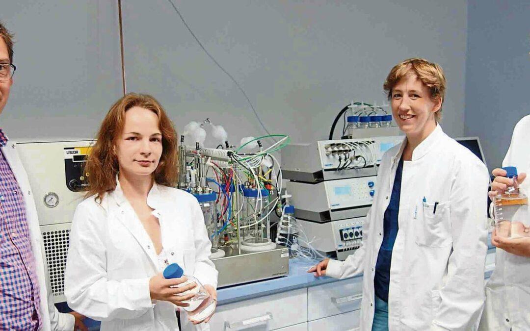 Chemische Biotechnologie in Straubing studieren